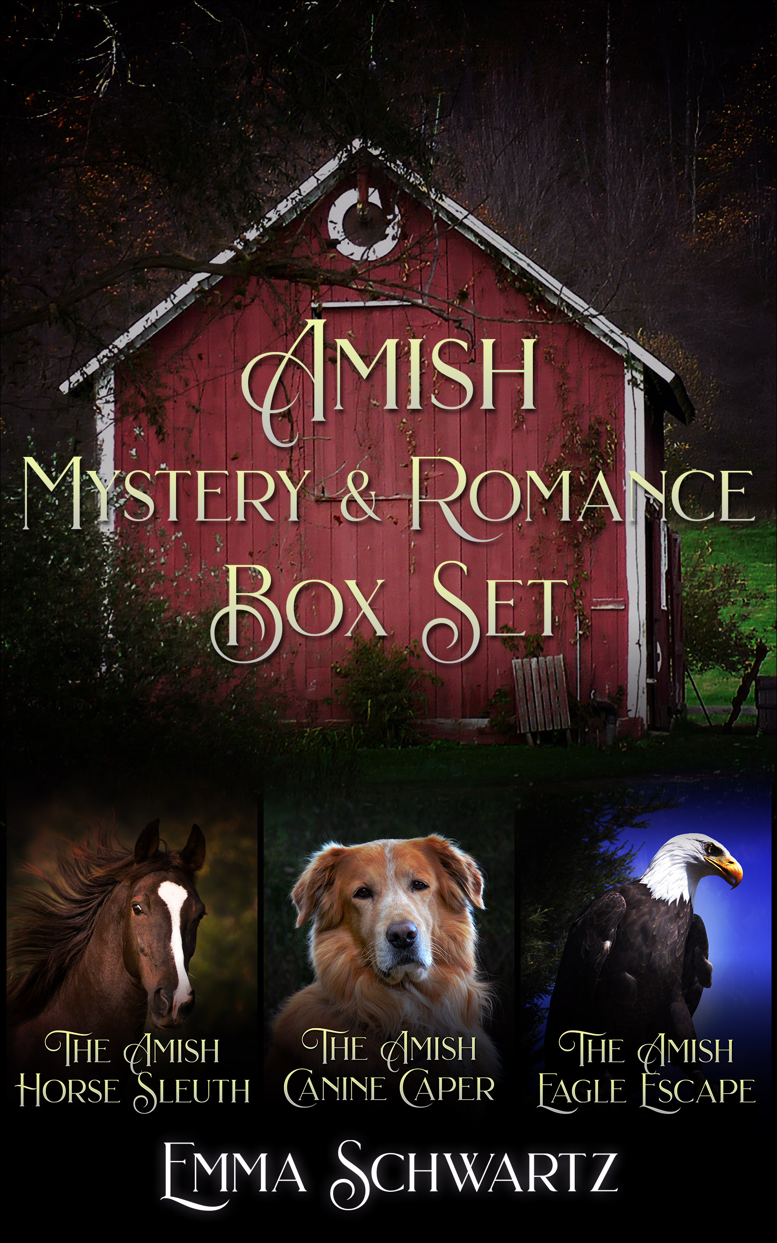 Amish Mystery & Romance Box Set